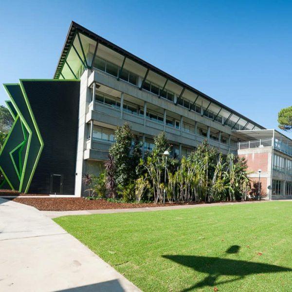 دانشگاه curtin استرالیا