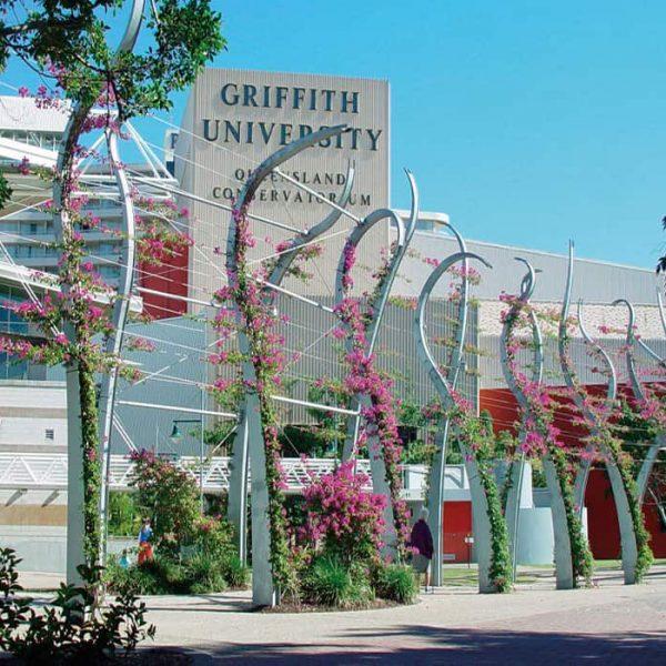 رتبه دانشگاه گریفیث