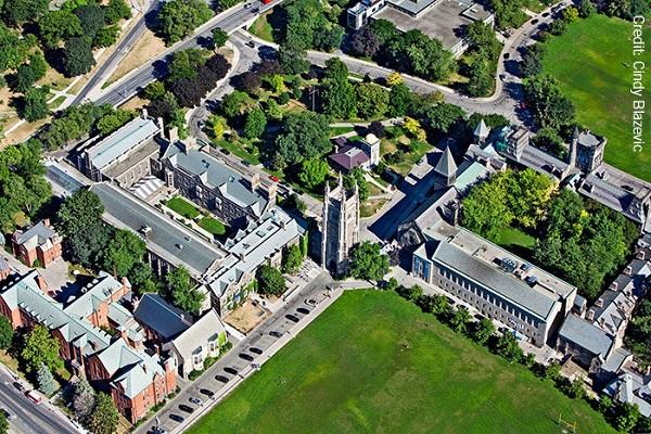 دانشگاه تورنتو