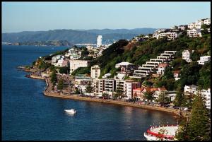 روش های مختلف مهاجرت و گرفتن ویزا به نیوزلند چیست؟