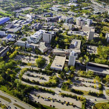 (Ewan Nicholson/University of Calgary)
