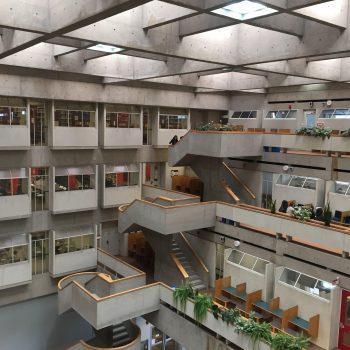 دانشگاه یورک-کتابخانه