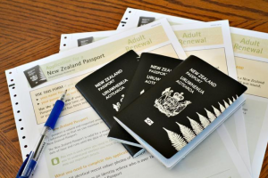 سایت رسمی مهاجرت به نیوزلند چه خدماتی را ارائه می دهد؟
