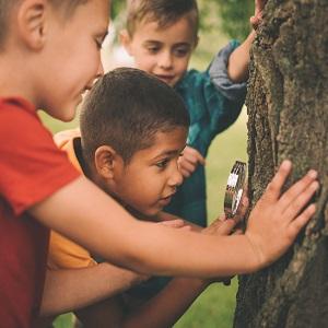 چگونه مربیان مهد کودک در حفظ محیط زیست نقش ایفا میکنند؟