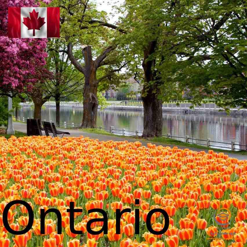 آب و هوای انتاریو کانادا