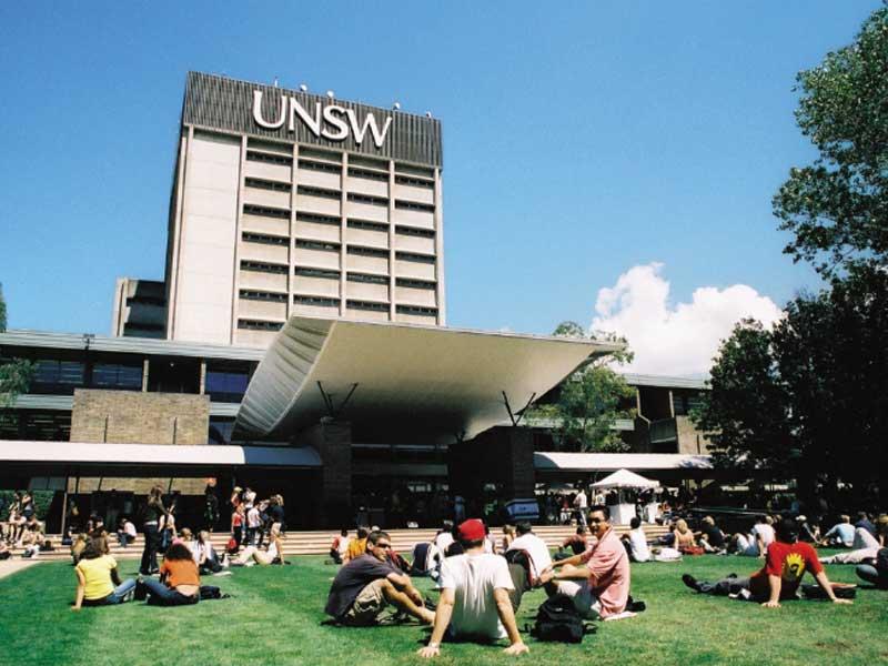 unsw university